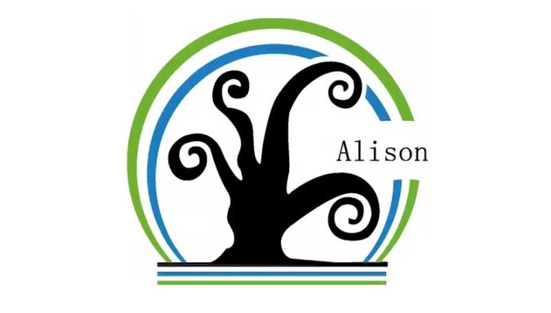 Alison Aerogel